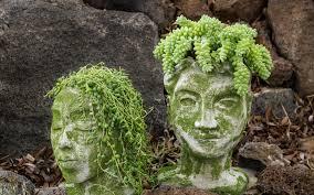 diy concrete head planters lily ardor