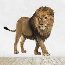 Wall Sticker Watchful Lion Muraldecal Com