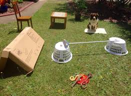 Home made obstacle course for dogs.