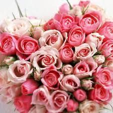 الأمـ ــل On Twitter مساء محمل بأجمل باقة ورد للناس الورد