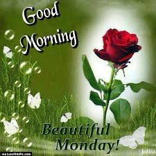 good morning beautiful monday pictures