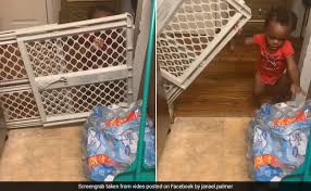 One Year Old Baby Lifts Gate To Steal Snacks From Kitchen Hilarious Video Will Make You Laugh Ndtv Food