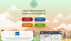 ตรวจสอบสิทธิ์เยียวยาเกษตรกร ผ่าน www.moac.go.th เท่านั้น : PPTVHD36