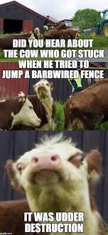 Bad Pun Cow Corny Jokes Funny Puns Dad Puns