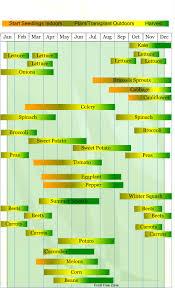 vegetable planting chart zone 6 marta