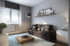 soft area rug interior design ideas