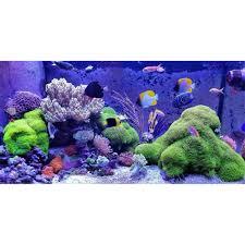 Đèn LED chuyên dùng cho bể san hô, cá cảnh biển-