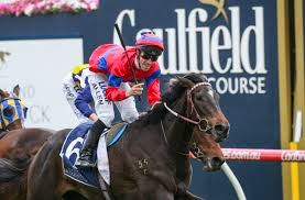 Caulfield Cup 2020 – Form Guide, Field ...