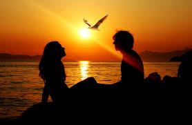 Sfondi : coppia, tramonto, mare, uccelli 3008x1957 - wallhaven - 663734 - Sfondi gratis - WallHere