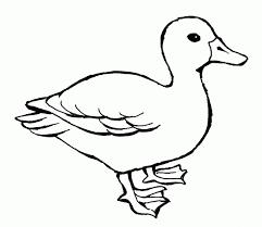 Znalezione obrazy dla zapytania: kolorowanki zwierząt z wiejskiego podwórka kaczka