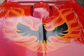 Pontiac Firebird Hood Decal Cartype