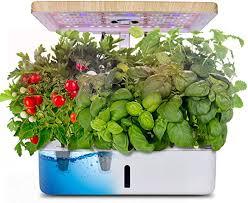 moistenland hydroponics growing system