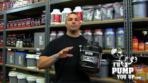 muscle gauge nutrition american iso