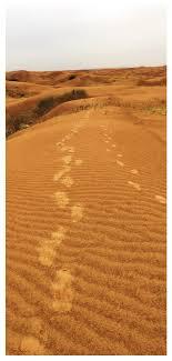 Lovepik صورة Jpg 400855191 Id خلفيات بحث صور خلفيات الصحراء Kubuqi