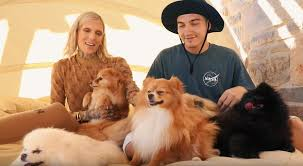 jeffree star s dogs meet diva daddy