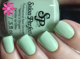 salon perfect in bloom duo mint julep