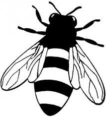 Honey Bee Car Or Truck Window Decal Sticker Rad Dezigns