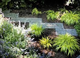 japanese garden a yard a half