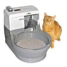 The Best Automatic Litter Boxes To Keep You & Your Cat Happy 2020 ...