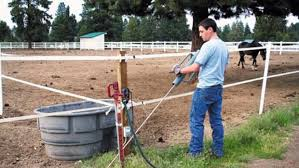 Safe Pasture Fencing For Horse Pastures Horse Fields Horse Paddocks Expert Advice On Horse Care And Horse Riding