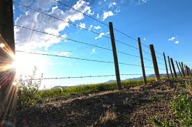 Building A Fence For Added Property Value Ranch Farm Properties