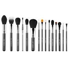 sigma beauty premium brush kit