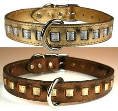 leather collars 4 dogs studded dog