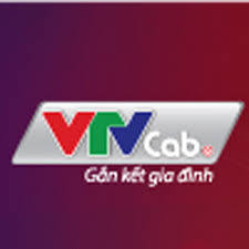 Truyền hình Cáp Việt Nam VTVcab - YouTube
