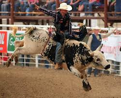 64 bull riding wallpapers on wallpaperplay