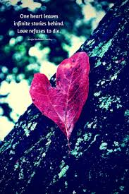 quotes tools and inspiration for your soul leaf quotes heart