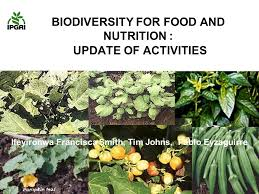 BIODIVERSITY FOR FOOD AND NUTRITION : UPDATE OF ACTIVITIES ...