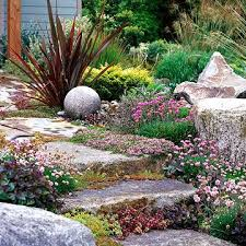 drought tolerant slope garden plan