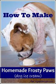 homemade frosty paws only 3