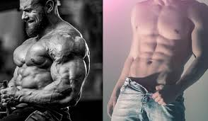 aesthetic bodybuilding tips and