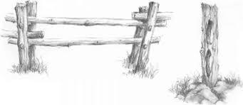 Fence Posts Drawing Nature Joshua Nava Arts
