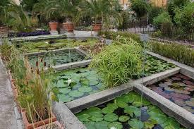 botanical garden orto botanico padua