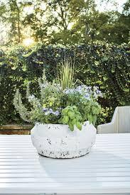 125 container gardening ideas