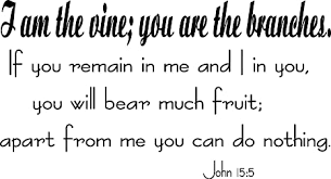 Amazon Com John 15 5 Vinyl Wall Art I Am The Vine You Are The Branches Remain In Me Bear Much Fruit Kitchen Dining