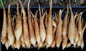 arrowroot flour arrowroot starch