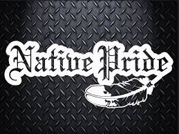 Native Pride Car Decal Choose Your Size Car Decal Laptop Decal Mug Decal Tumbler Decal Cup Decal Phone Decal Pride Tattoo Phone Decals Laptop Decal