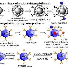 pet trackable phage nanoparticles