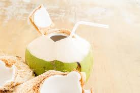 coconut milk vs coconut water which