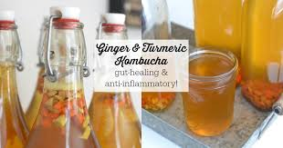 ginger and turmeric kombucha gut