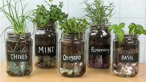 15 easy diy herb garden ideas tip junkie