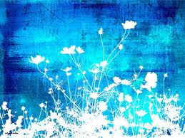 خلفيات باللون الازرق صور زرقاء مريحة للعين صور حب