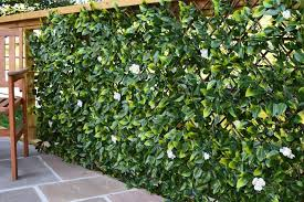 Extendable Artificial Hedging Artificial Hedges The Outdoor Look Artificial Hedges Trellis Fence Hedges