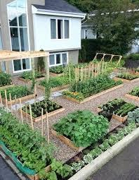 backyard vegetable gardens oliviahome co