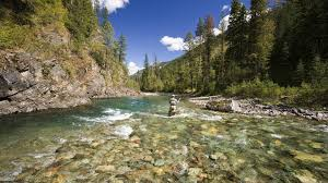 hd fly fishing wallpaper 68 images