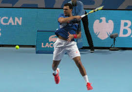 Tsonga Brushes Aside Berdych To Set Up Rematch With Federer ...