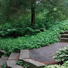 15 tips for designing a garden